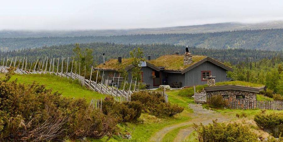 adelaparvu.com despre casa veche restaurata in Norvegia, casa de lemn in Hornsjo, Foto Per Erik Jaeger (1)