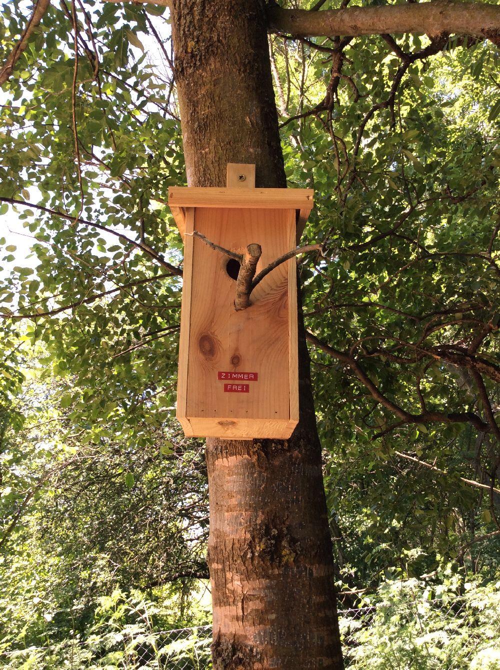 adelaparvu.com despre casuta din lemn pentru gradina construita cu unelte Bosch, design Stefan Lazar, Foto Stefan Lazar (32)