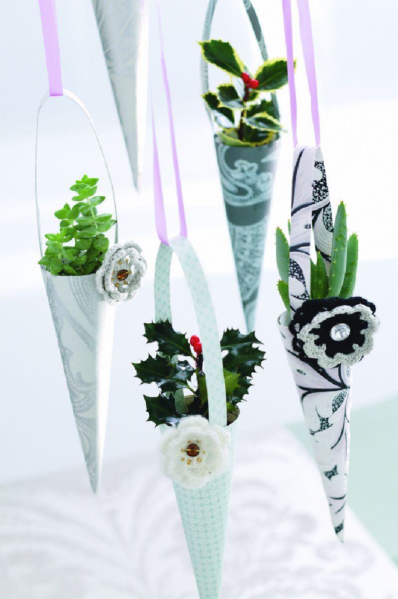 adelaparvu.com despre Crassula ovata, arborele de jad sau planta norocoasa, Text Carli Marian (1)