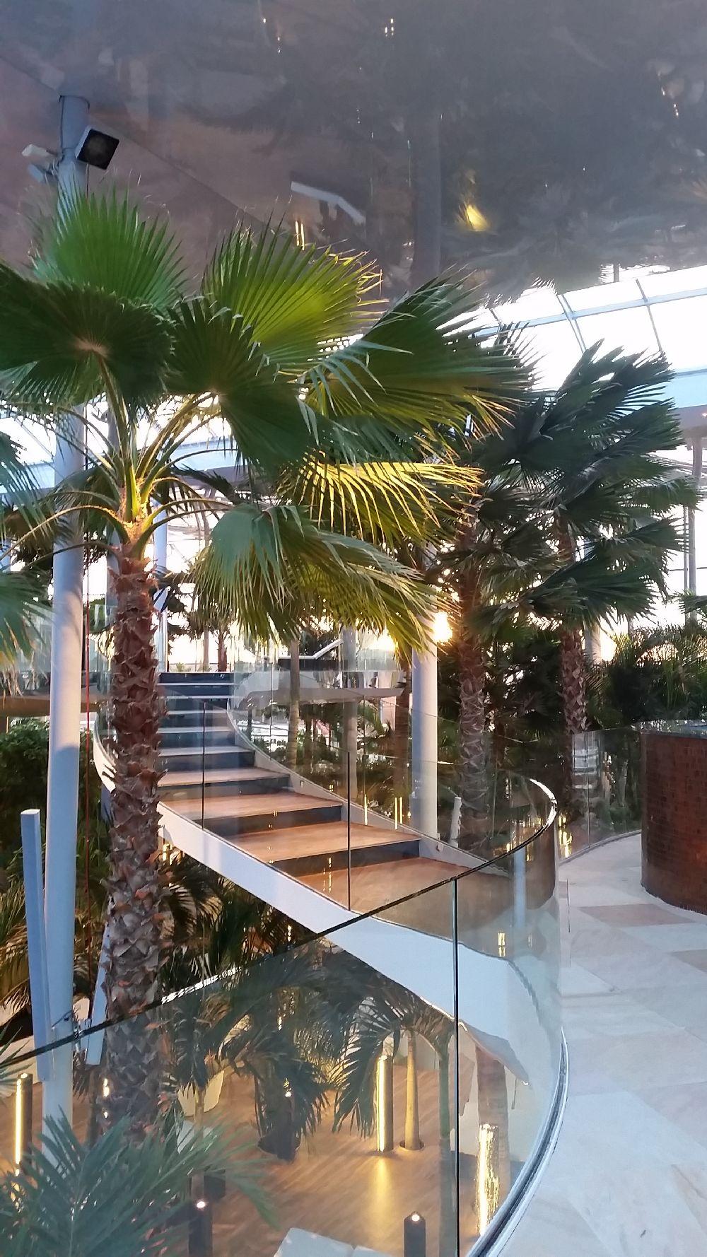 adelaparvu.com despre Therme Bucuresti, zona The Palm (41)