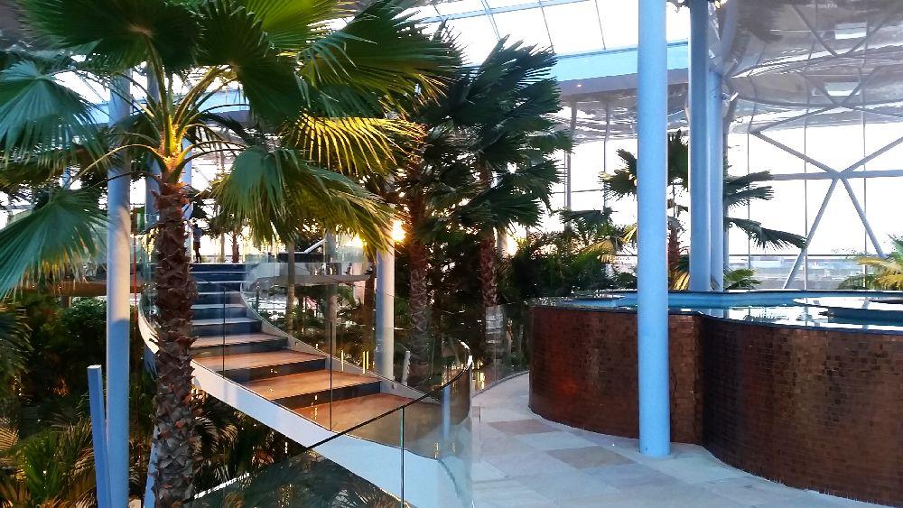 adelaparvu.com despre Therme Bucuresti, zona The Palm (42)
