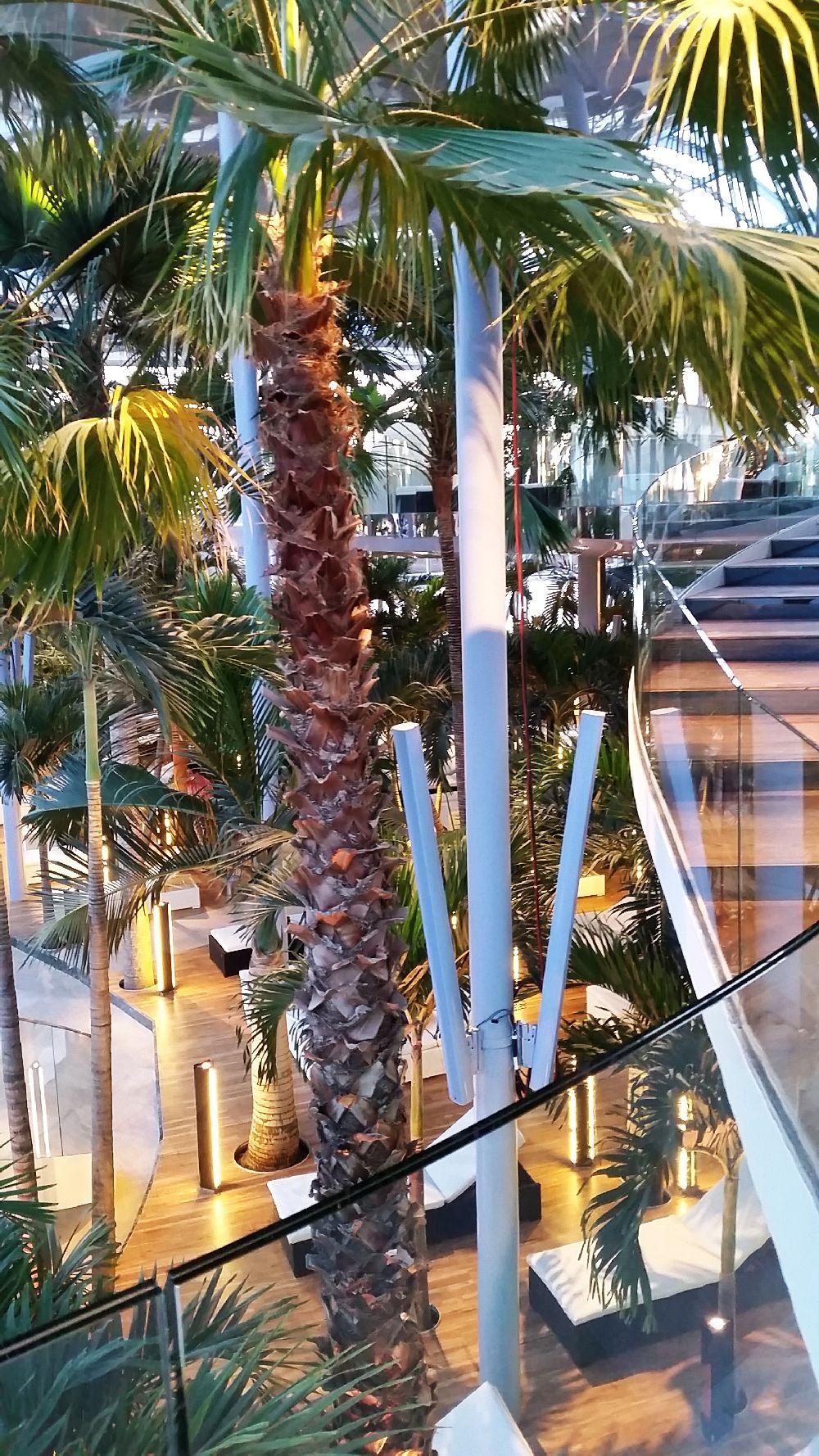 adelaparvu.com despre Therme Bucuresti, zona The Palm (43)