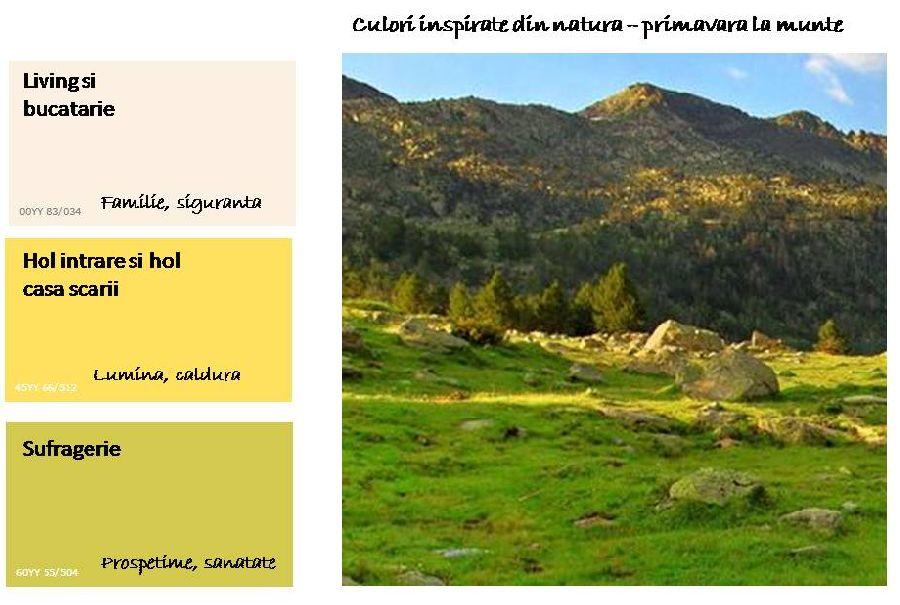 adelaparvu.com despre cum sa-ti alegi culorile casei (1)