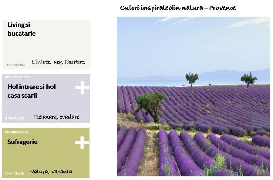 adelaparvu.com despre cum sa-ti alegi culorile casei (2)