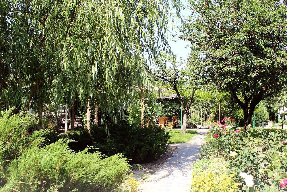 adelaparvu.com despre Garden Studio Timisoara, garsoniera 35 mp cu gradina, design Alexandru Damian si Olimpia Onci (10)