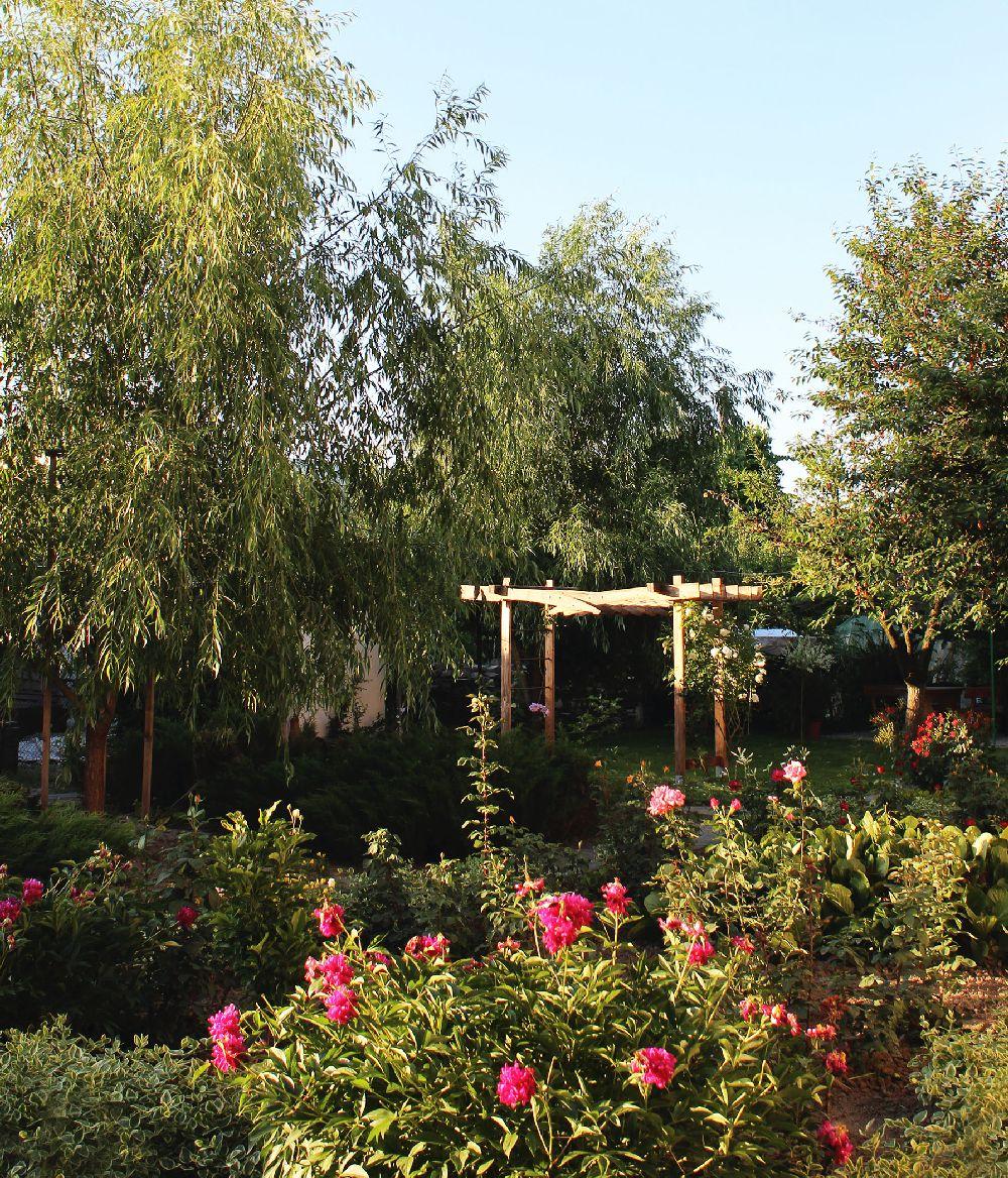 adelaparvu.com despre Garden Studio Timisoara, garsoniera 35 mp cu gradina, design Alexandru Damian si Olimpia Onci (11)