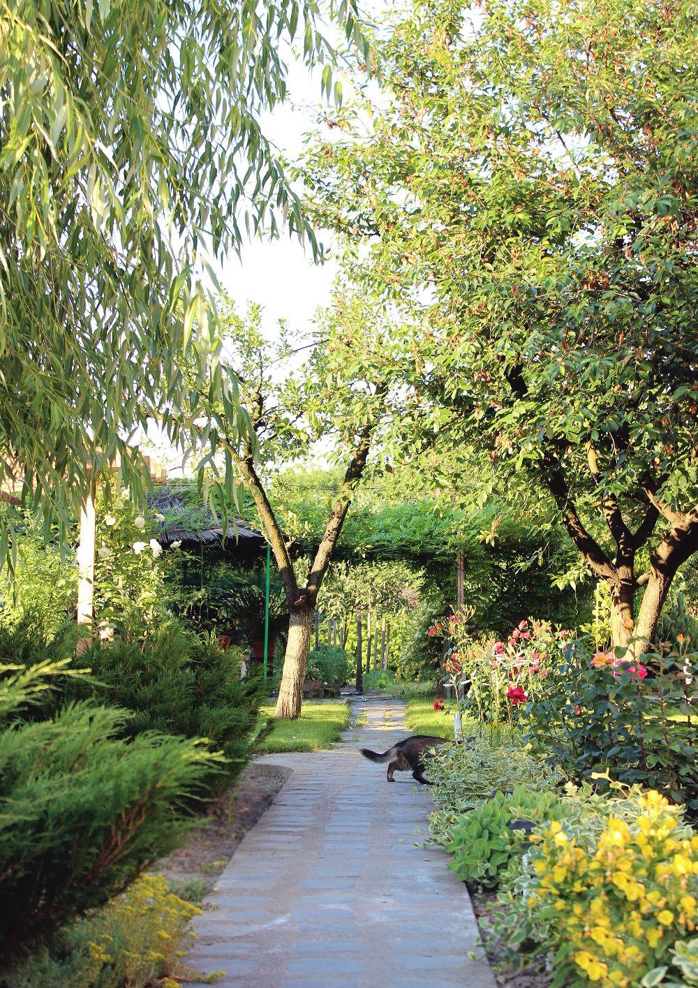 adelaparvu.com despre Garden Studio Timisoara, garsoniera 35 mp cu gradina, design Alexandru Damian si Olimpia Onci (12)