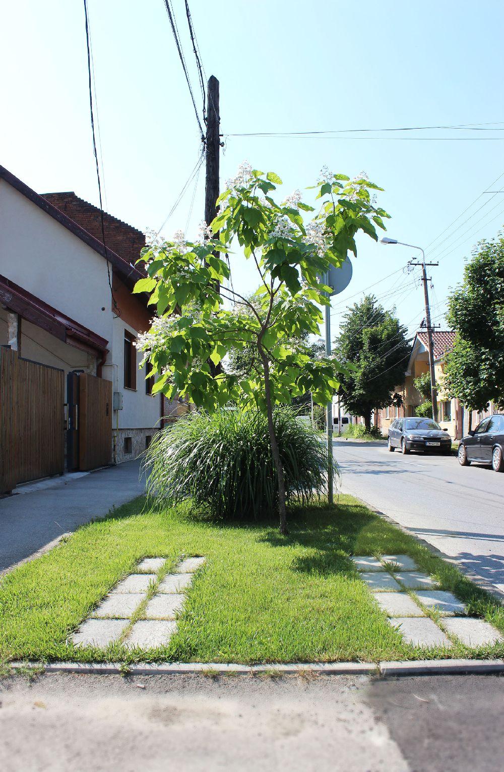 adelaparvu.com despre Garden Studio Timisoara, garsoniera 35 mp cu gradina, design Alexandru Damian si Olimpia Onci (13)