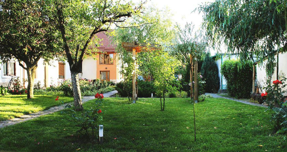 adelaparvu.com despre Garden Studio Timisoara, garsoniera 35 mp cu gradina, design Alexandru Damian si Olimpia Onci (2)