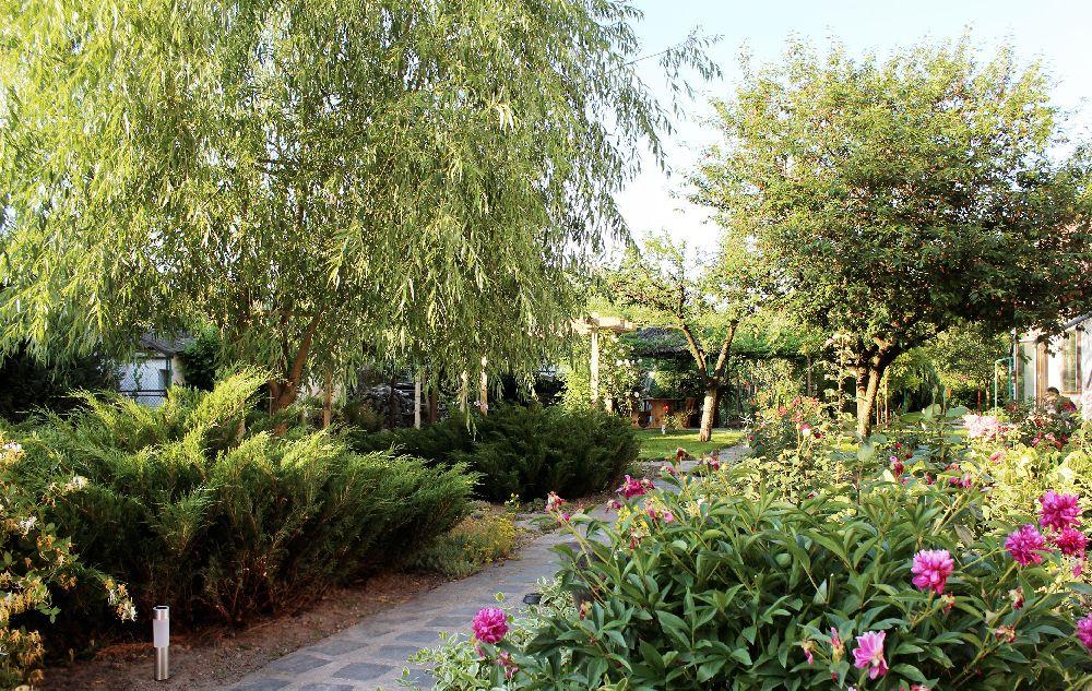 adelaparvu.com despre Garden Studio Timisoara, garsoniera 35 mp cu gradina, design Alexandru Damian si Olimpia Onci (4)