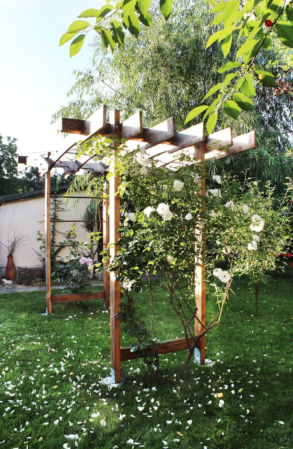 adelaparvu.com despre Garden Studio Timisoara, garsoniera 35 mp cu gradina, design Alexandru Damian si Olimpia Onci (5)