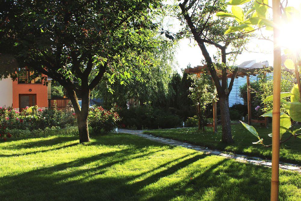 adelaparvu.com despre Garden Studio Timisoara, garsoniera 35 mp cu gradina, design Alexandru Damian si Olimpia Onci (7)