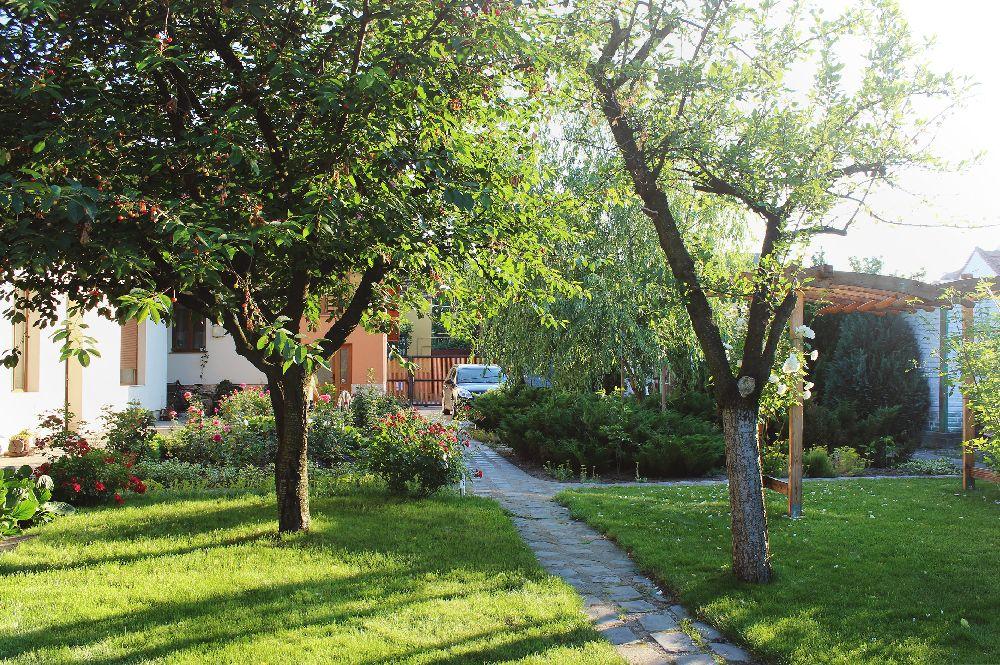 adelaparvu.com despre Garden Studio Timisoara, garsoniera 35 mp cu gradina, design Alexandru Damian si Olimpia Onci (8)