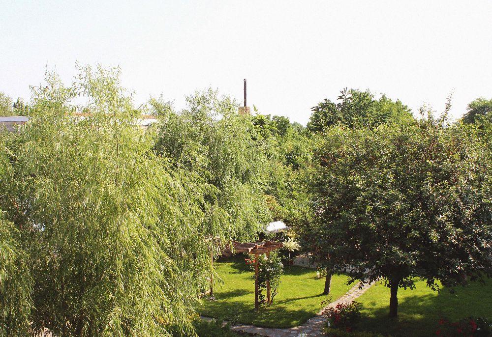 adelaparvu.com despre Garden Studio Timisoara, garsoniera 35 mp cu gradina, design Alexandru Damian si Olimpia Onci