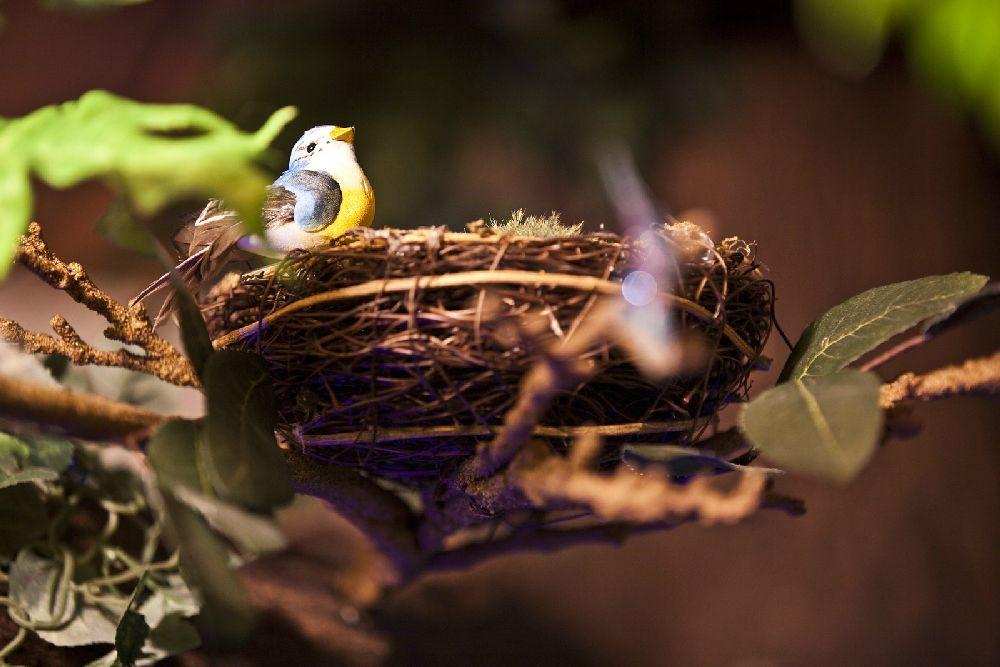 adelaparvu.com despre camera de copil transformata, etape decoratiuni, Foto Rob Adams (16)