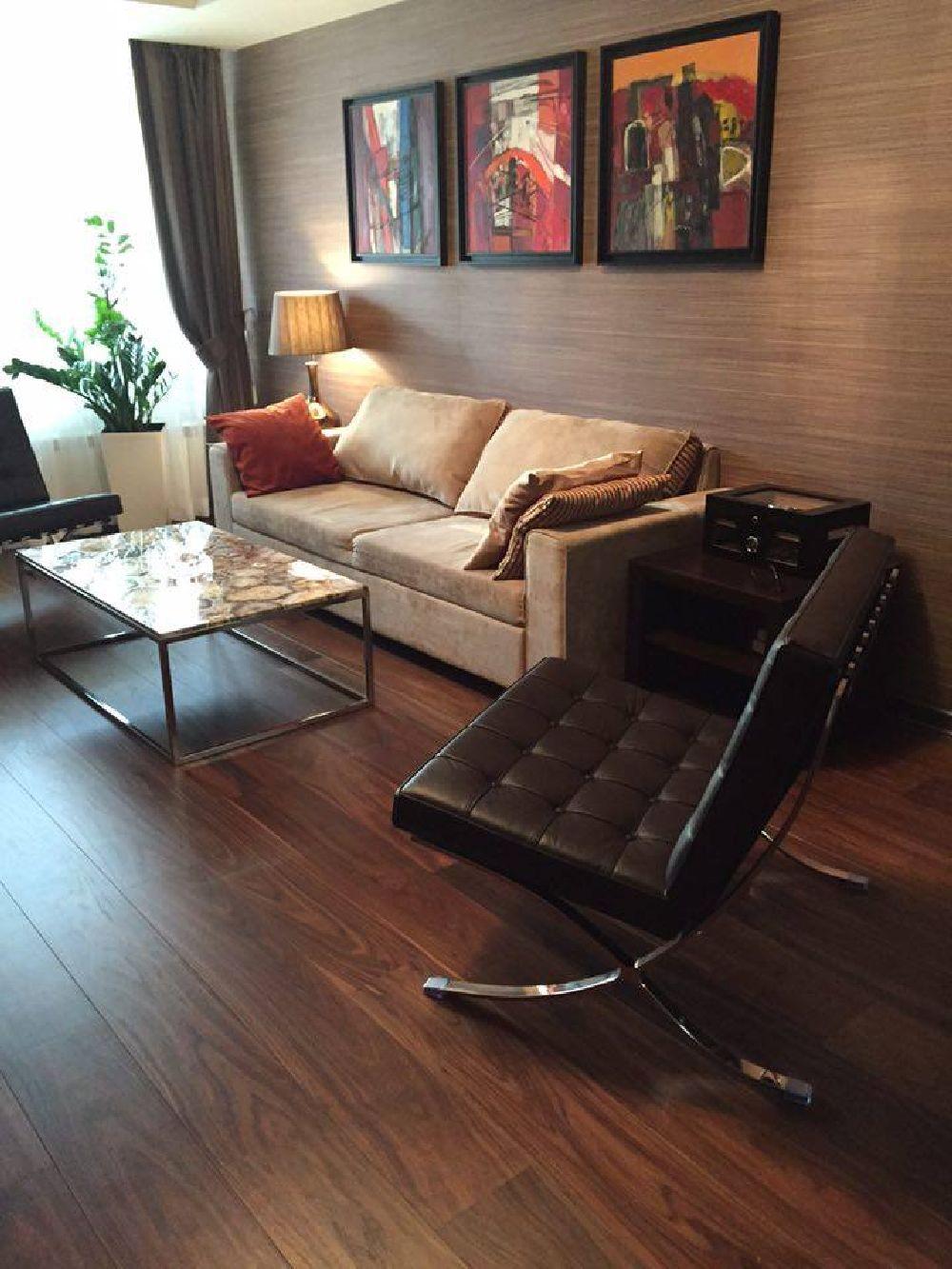 adelaparvu.com despre amenajare lux apartament 2 camere, 55 mp, Bucuresti, design interior arh Claudia Stefanescu, Foto Victor Oancea (19)