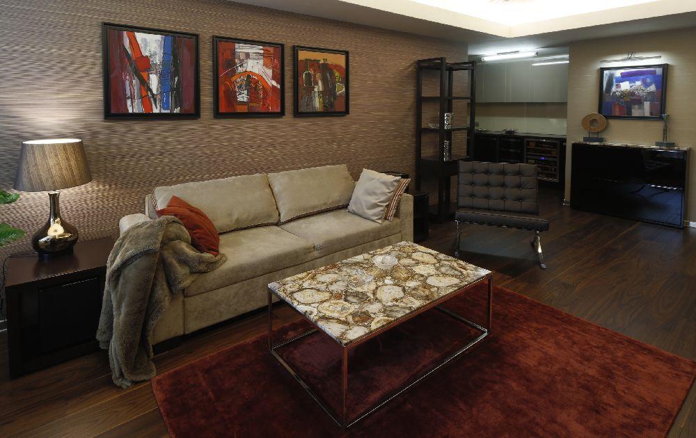 adelaparvu.com despre amenajare lux apartament 2 camere, 55 mp, Bucuresti, design interior arh Claudia Stefanescu, Foto Victor Oancea (2)