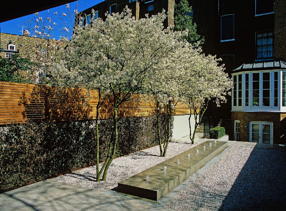 adelaparvu.com despre gradini mici si elegante, Gradina Pelham Crescent, designer Luciano Giubbilei (3)