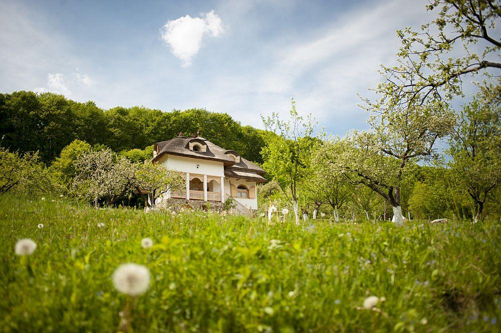 adelaparvu.com despre casa traditionala romaneasca reinterpretata, Foto Dragos Boldea (11)