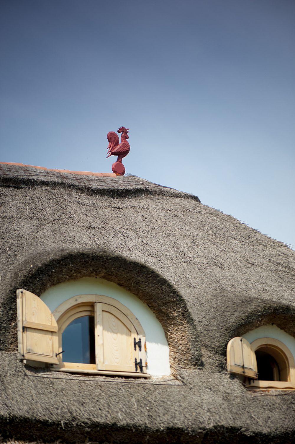 adelaparvu.com despre casa traditionala romaneasca reinterpretata, Foto Dragos Boldea (20)