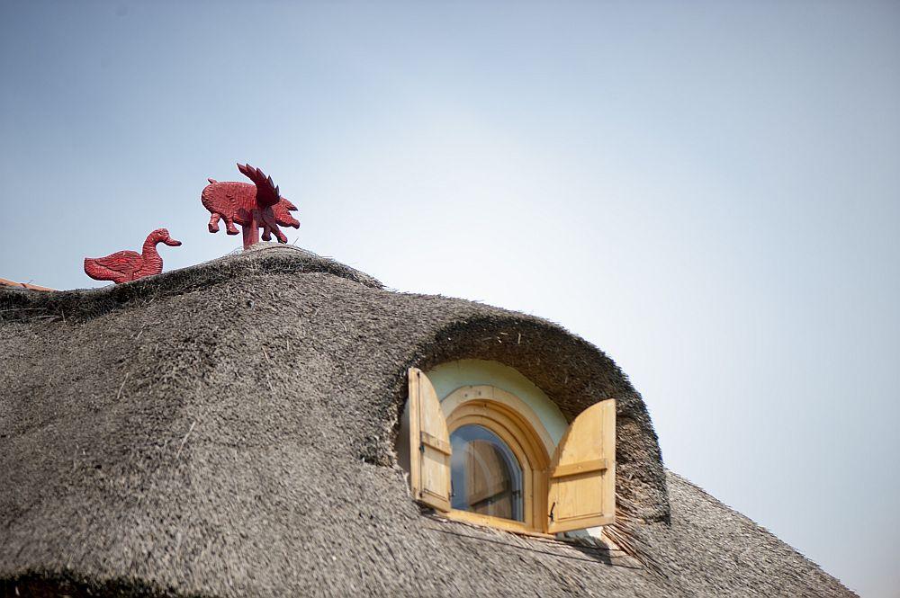 adelaparvu.com despre casa traditionala romaneasca reinterpretata, Foto Dragos Boldea (21)