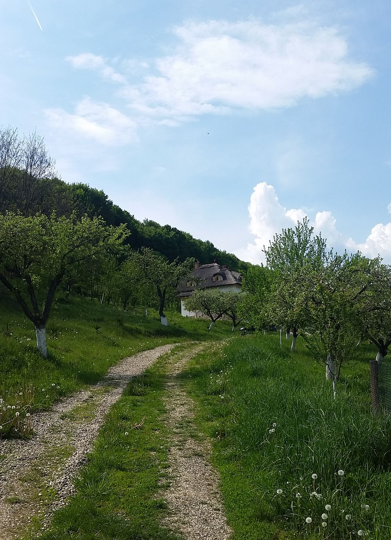 adelaparvu.com despre casa traditionala romaneasca reinterpretata, Foto Dragos Boldea (8)