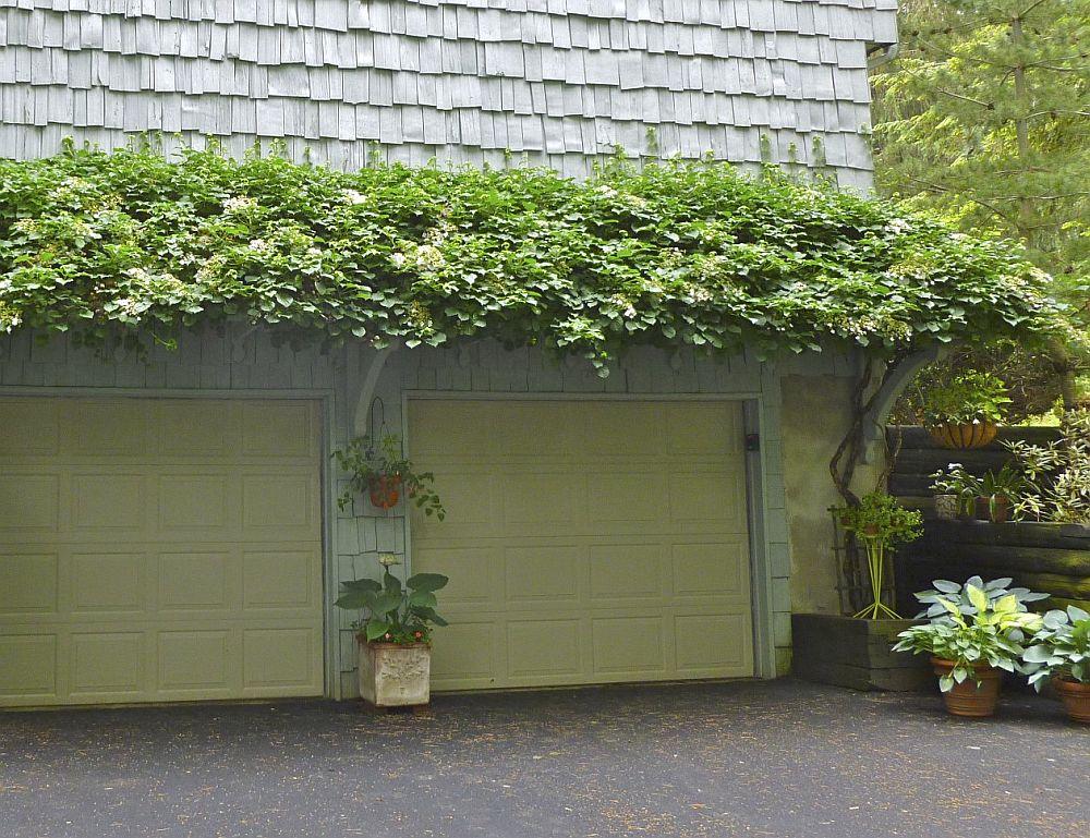 Foto laurries.blogspot.com