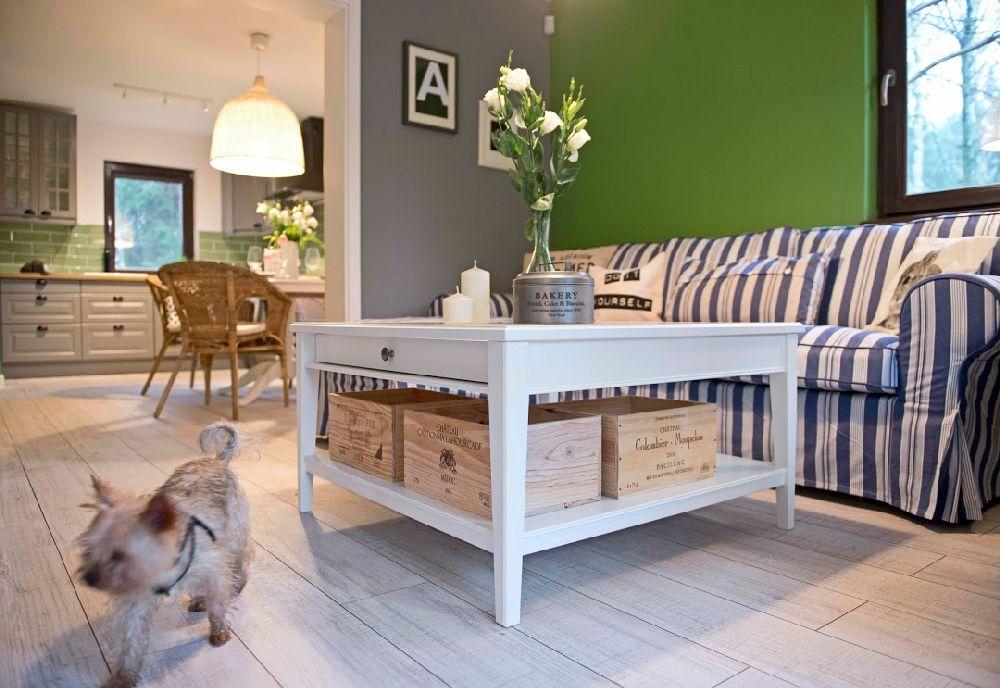 adelaparvu.com interior cu verde si albastru, design interior Shoko Design (13)