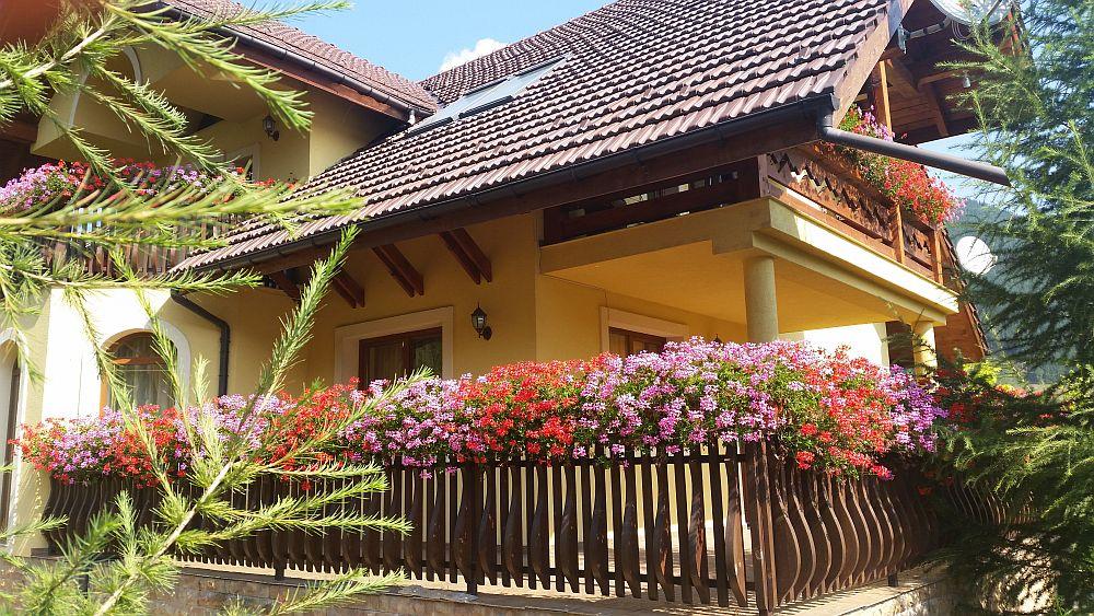adelaparvu.com despre gradina in Bucovina, design Garden Green Campulung Moldovenesc, Foto Adela Parvu (28)