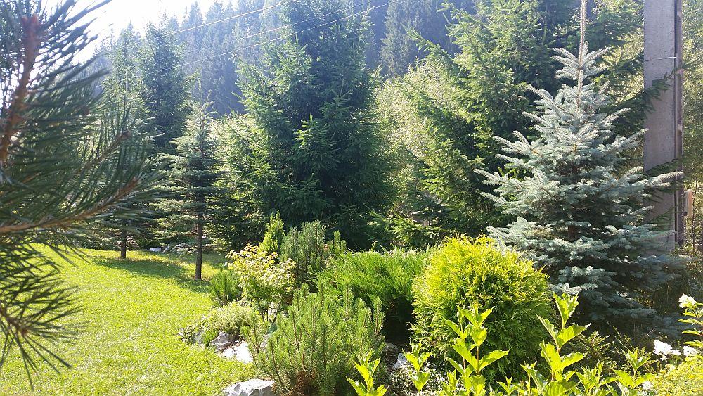 adelaparvu.com despre gradina in Bucovina, design Garden Green Campulung Moldovenesc, Foto Adela Parvu (4)