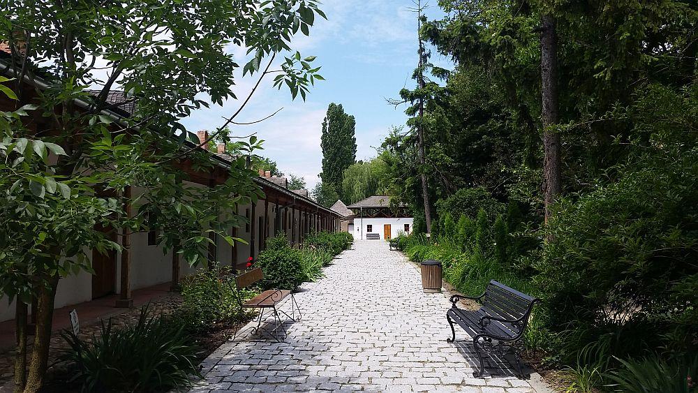 adelaparvu.com despre Conacul Golestilor, Muzeul Viticulturii si Pomiculturii, jud Arges, Romania (41)
