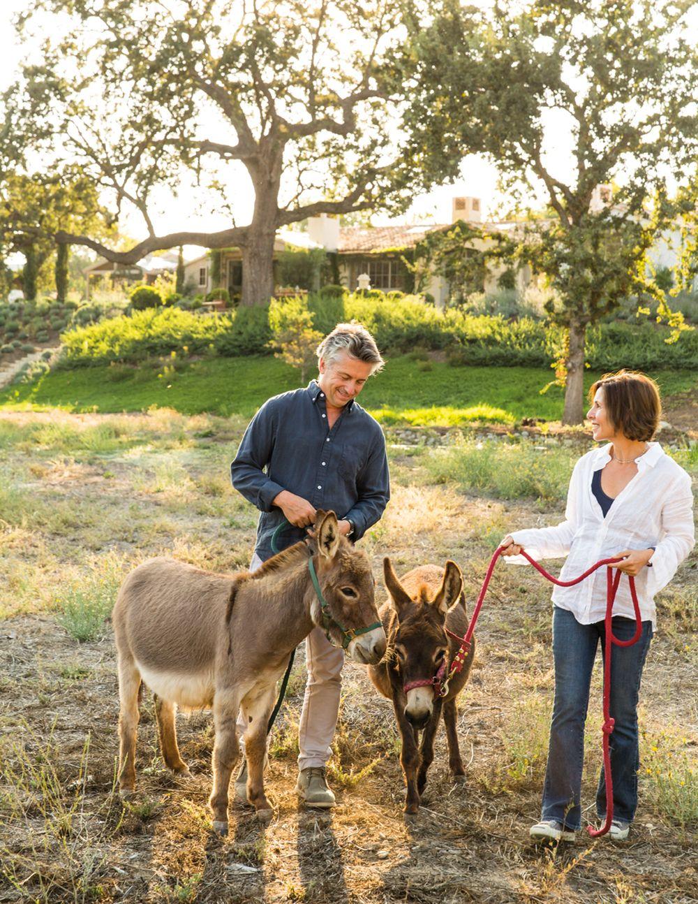 adelaparvu.com despre Patina Farm, California, gradina, arhitectura si design Giannetti Home (9)