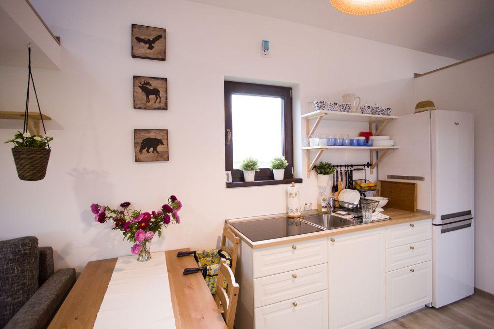adelaparvu-com-despre-tiny-house-in-miercurea-ciuc-romania-casa-30-mp-desginer-botond-szakacs-foto-biro-zoltan-14