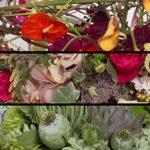 adelaparvu.com despre Trenduri Florale 2017, Text Carli Marian