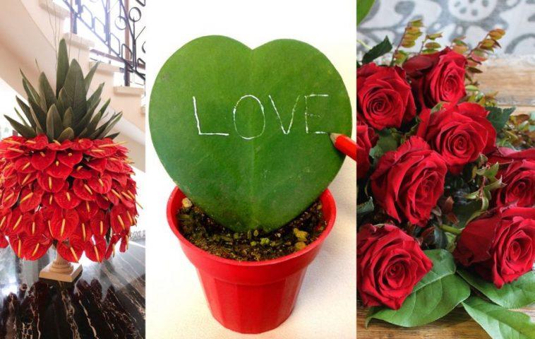 adelaparvu.com despre plante simboluri ale iubirii, Text Carli Marian