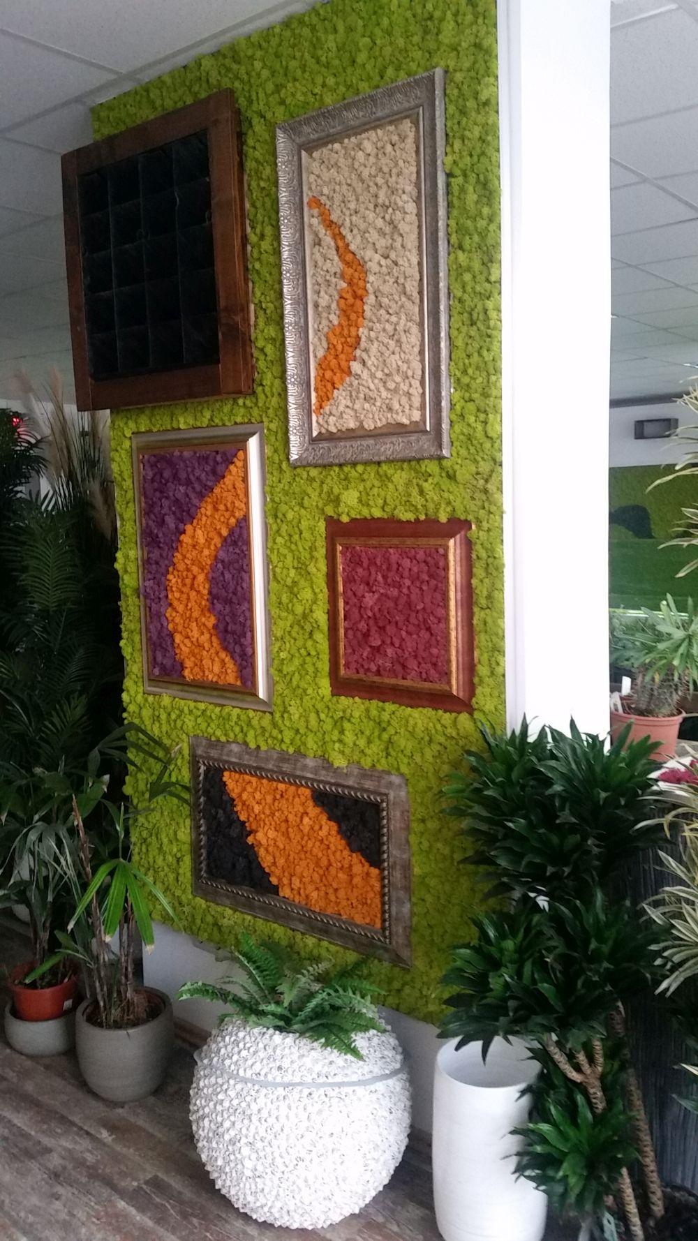 adelaparvu.com despre tablouri cu plante stabilizate, design Arta Gradinilor, Bucuresti (2)