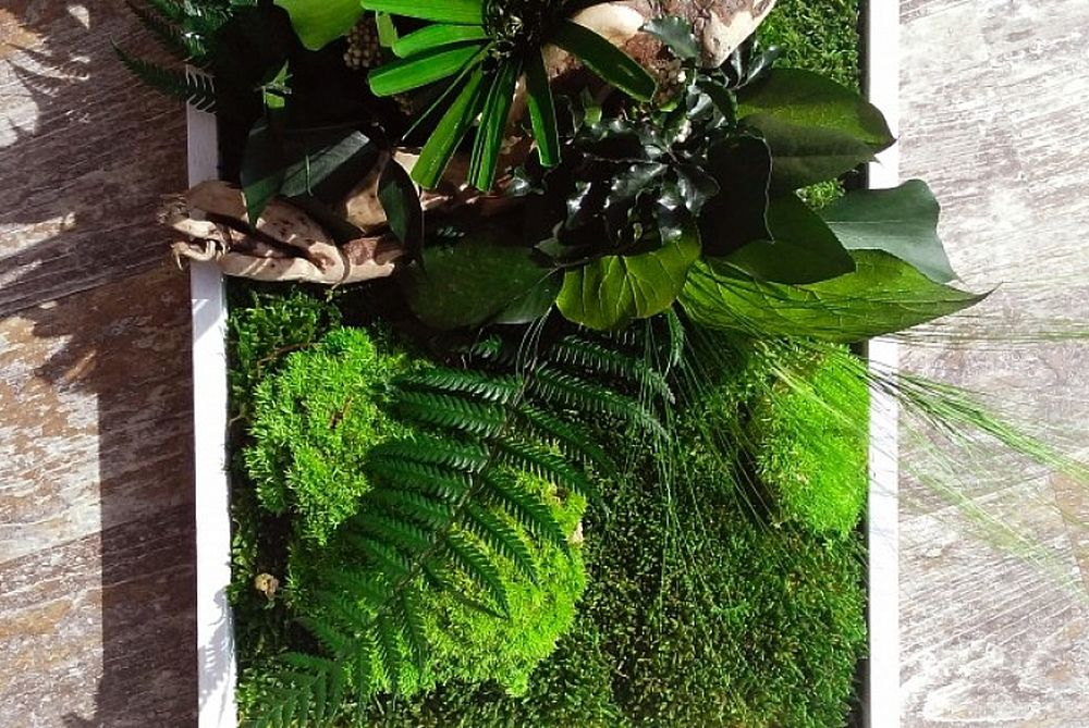 adelaparvu.com despre tablouri cu plante stabilizate, design Arta Gradinilor, Bucuresti (20)