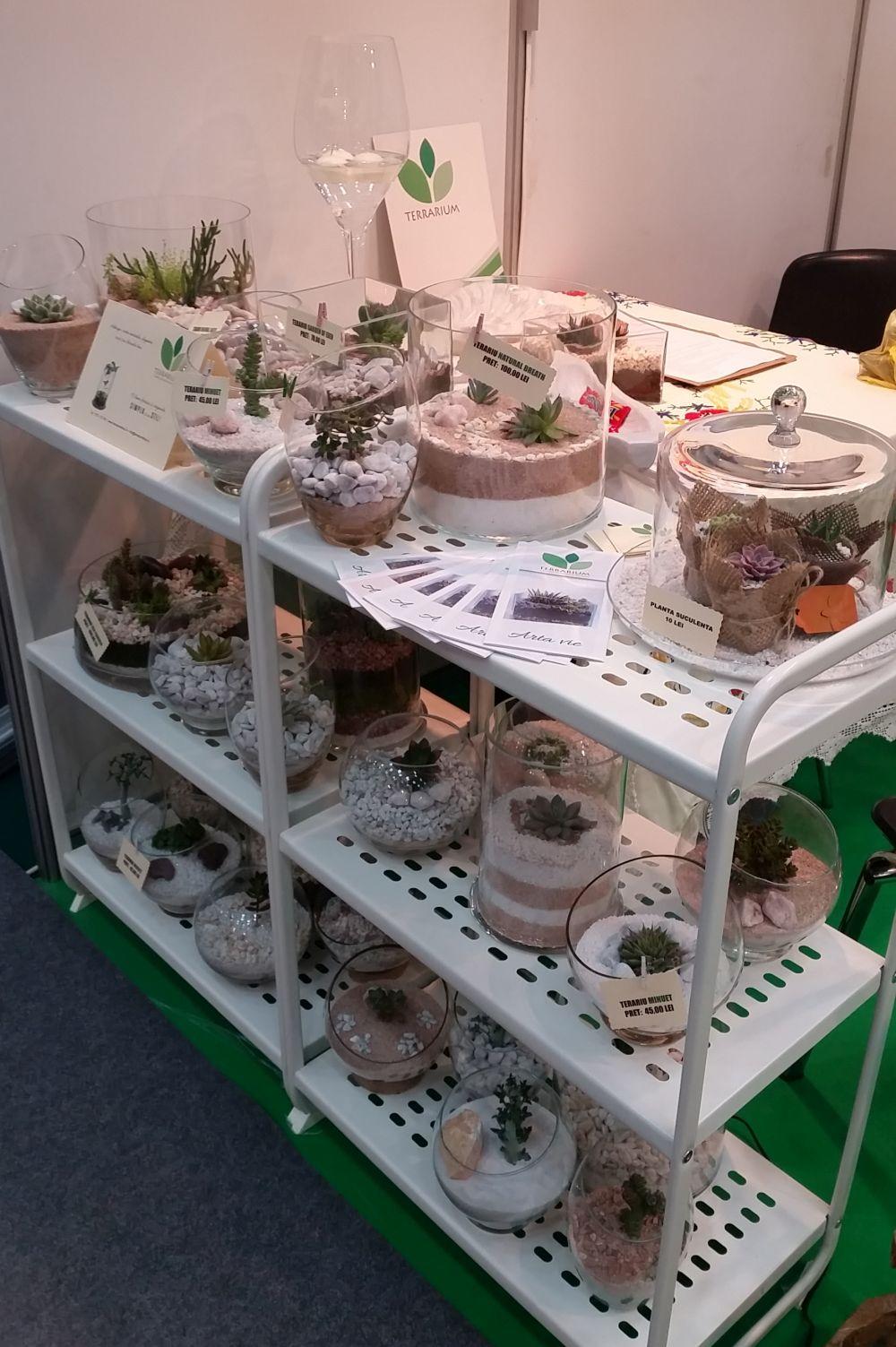 adelaparvu.com despre Terrarium Shop, vase si terarii produse in Romania (9)