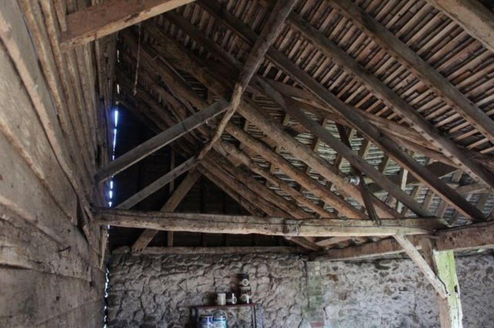 adelaparvu.com despre hambar spectaculos transformat, Arhitectura Liddicoat & Goldhill, Foto Will Scott (27)
