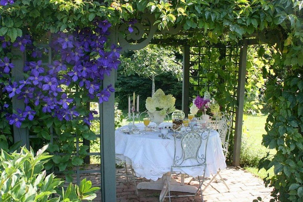 adelaparvu.com despre tunderea corecta a Clematisului, Text Carli Marian, Foto Aiken House & Gardens