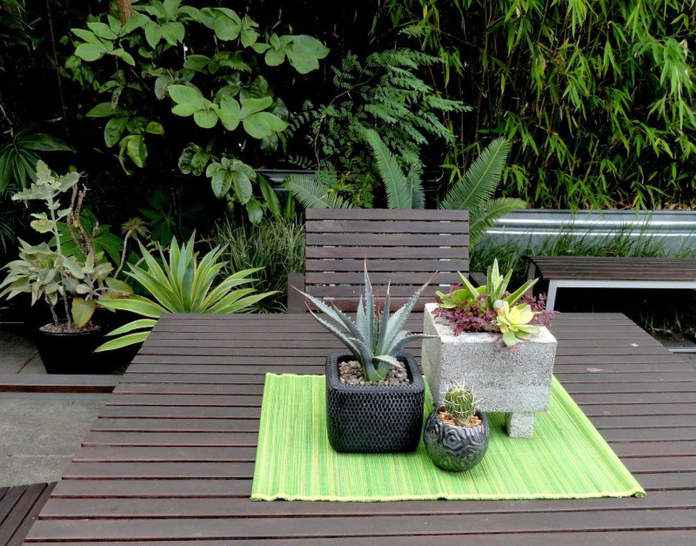 adelaparvu.com despre agave, Text Carli Marian (6)