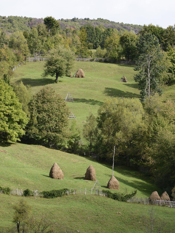 adelaparvu.com despre cabana de unte, Valea Doftana, Cabana Sub Bai, Foto Corneliu David (2)