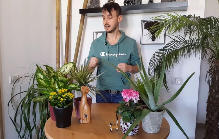 Carli Marian, ing. horticol și designer florist. Canal de YouTube/CarliMarian