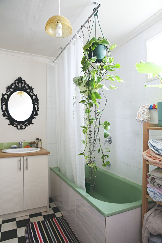 adelaparvu.com despre top 5 plante potrivite in baie, Text Carli Marian (8)