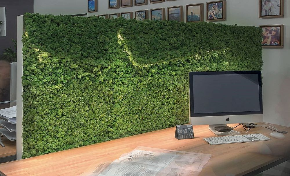 Panourile fonoabsorbante pot fi folosite și ca separatoare în birourile open-space.