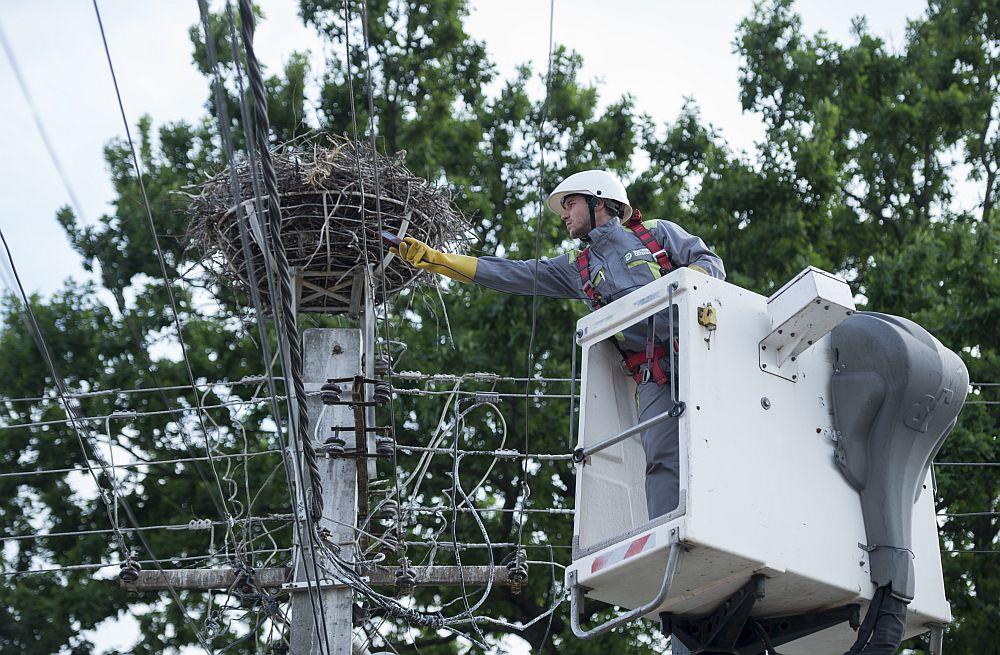 Te-ai gândit de unde îți poți alimenta casa cu energie? Ei bine, unul dintre cei mai importanți furnizorii de energie electrică și gaze naturale de la noi este Grupul CEZ, prezent pe piața româneasca încă din anul 2005, odată cu preluarea companiei de distribuție Electrica Oltenia SA. Grupul CEZ operează în România prin 8 companii: Distribuție Oltenia, CEZ România, CEZ Vânzare, CEZ Trade, Tomis Team, MW Invest, Ovidiu Development și TMK Hydroenergy Power.