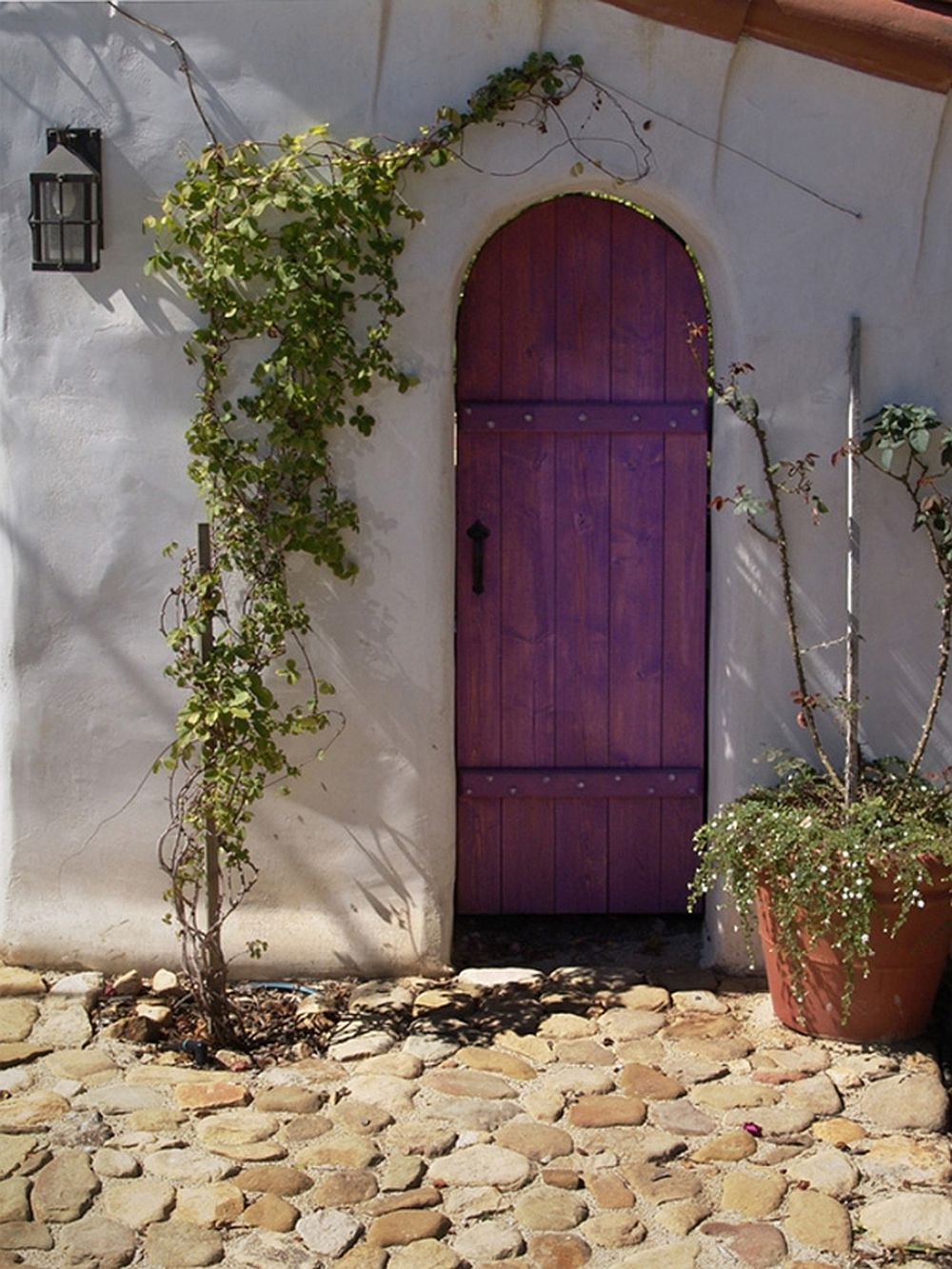 Detaliu ușă Casa Bridge, Tierney, arhitect Jeff Shelton