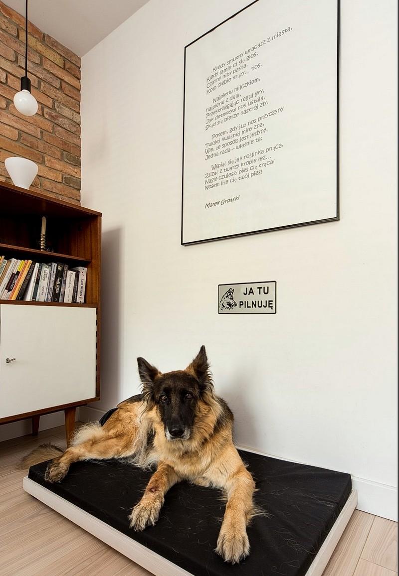 În dormitorul matrimonial a fost instalat și locul de dormit al câinelui familiei. O saltea conforatbilă lângă pat este exact ce era nevoie. Pentru locul câinelui s-a avut în vedere ca pe această parte a patului să existe mai mult spațiu între pat și perete.
