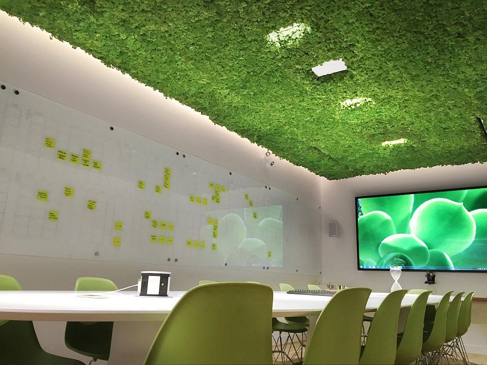 adelaparvu.com despre licheni decorativi, interioare cu licheni (5)