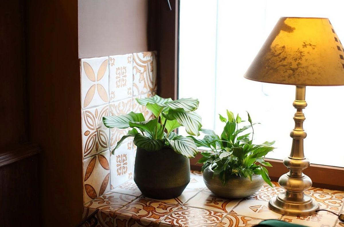 Ferestrele aveau glafuri late, dar în locul lor designerul a prevăzut o plcare cu faianță patchwork, vizibilă în condițiile în care în loc de perdele s-au folosit storuri. Astfel, și zona ferestrelor poate fi folosită, dar și să fie una decorativă vizual. De remarcat faptul că plăcile ceramice de tip patchwork sunt la aceeași înălțime în hol, loc de luat masa, bucătărie și interiorul glafului ferestrelor, ceea ce ordonează spațiul.